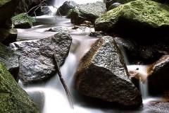 Flow - Und alles geht wie von selbst